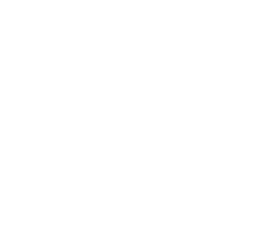 O. Naray Strategic Consulting | Olivier Naray | Genève Logo
